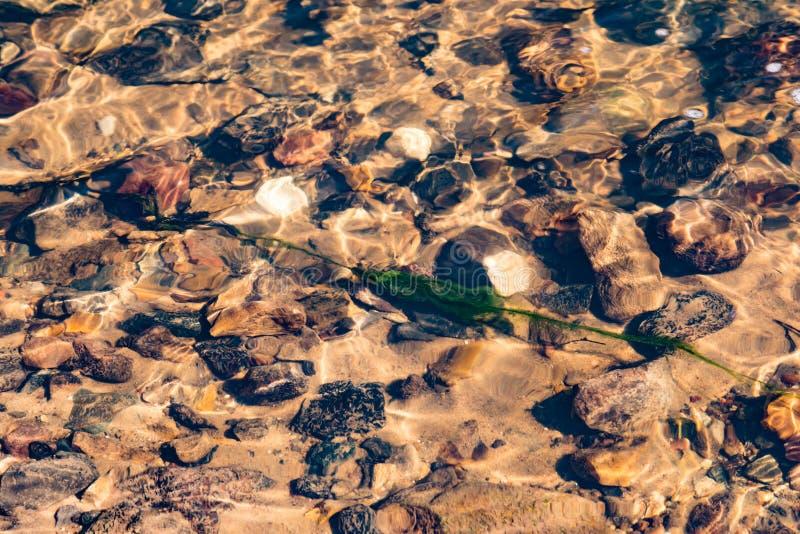 Pierres et algues humides sous l'eau dans une crique photographie stock libre de droits