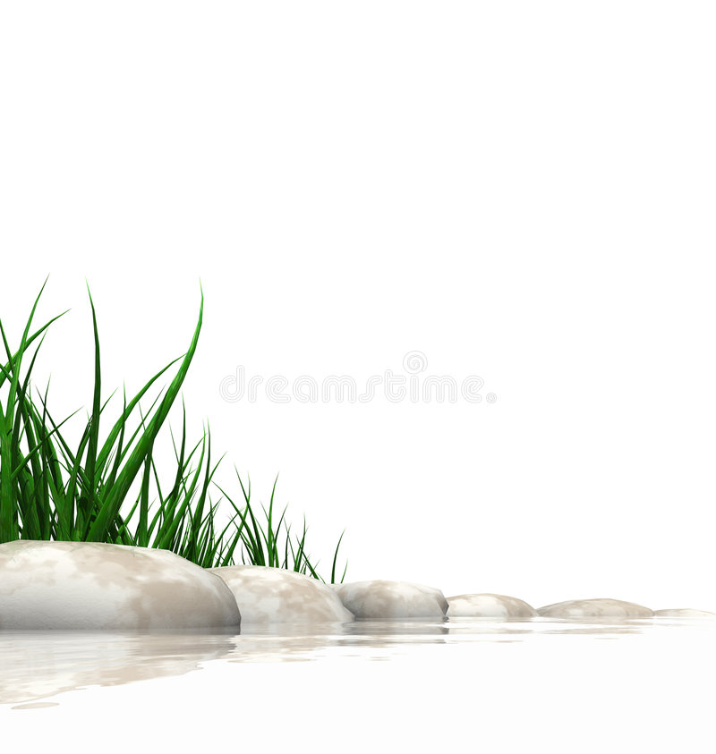 Pierres et herbe au bord des eaux illustration stock