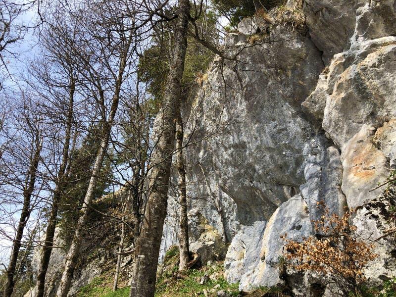 Pierres et roches de la montagne maximale Rigi de Vitznauerstock ou de Gersauerstock photos libres de droits