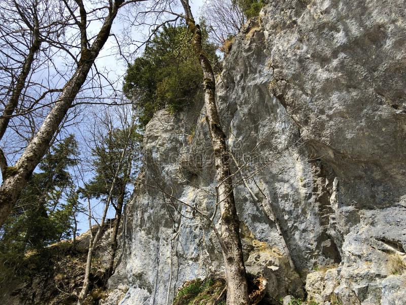 Pierres et roches de la montagne maximale Rigi de Vitznauerstock ou de Gersauerstock photographie stock