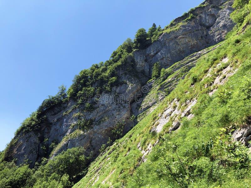 Pierres et roches du massif Alpstein de montagne et dans la r?gion d'Appenzellerland photo libre de droits