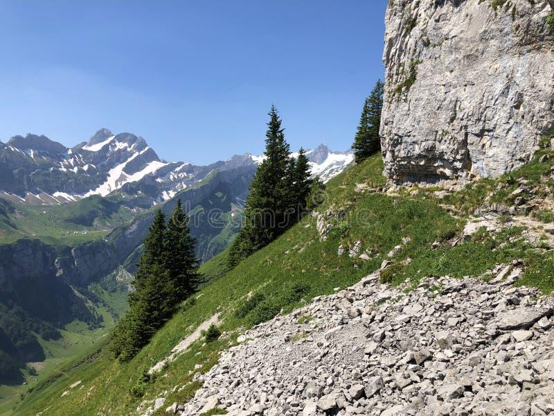 Pierres et roches du massif Alpstein de montagne et dans la r?gion d'Appenzellerland image libre de droits