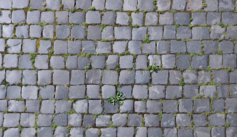 Pierres grises de granit de la vieille chaussée de ville images libres de droits