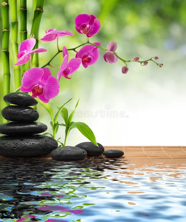 Pierres orchidée-noires bambou-pourpres de composition photos libres de droits