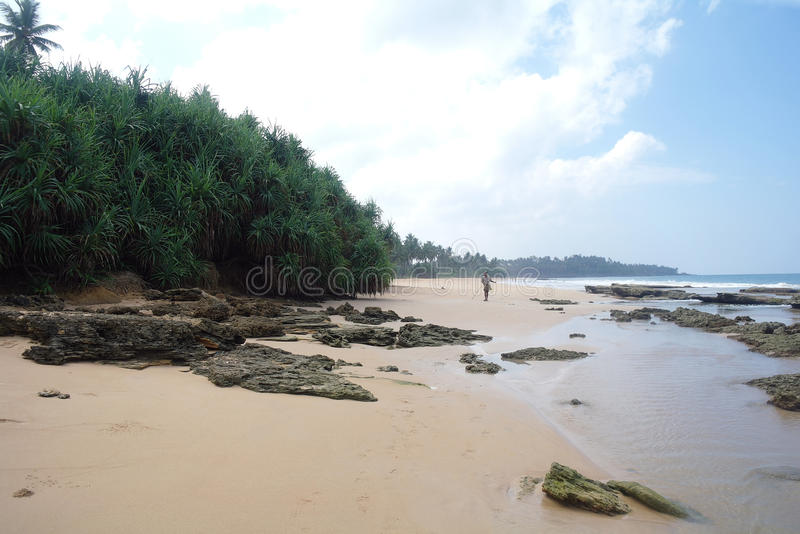 Pierres sur la plage de sable photo libre de droits