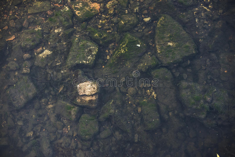 Pierres sur le fond de rivière acuité photo stock