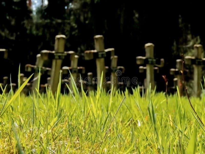 Pierres tombales dans l'herbe verte fraîche images stock
