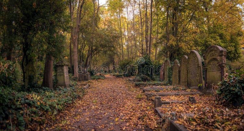 Pierres tombales de cimetière de Highgate, Londres image libre de droits