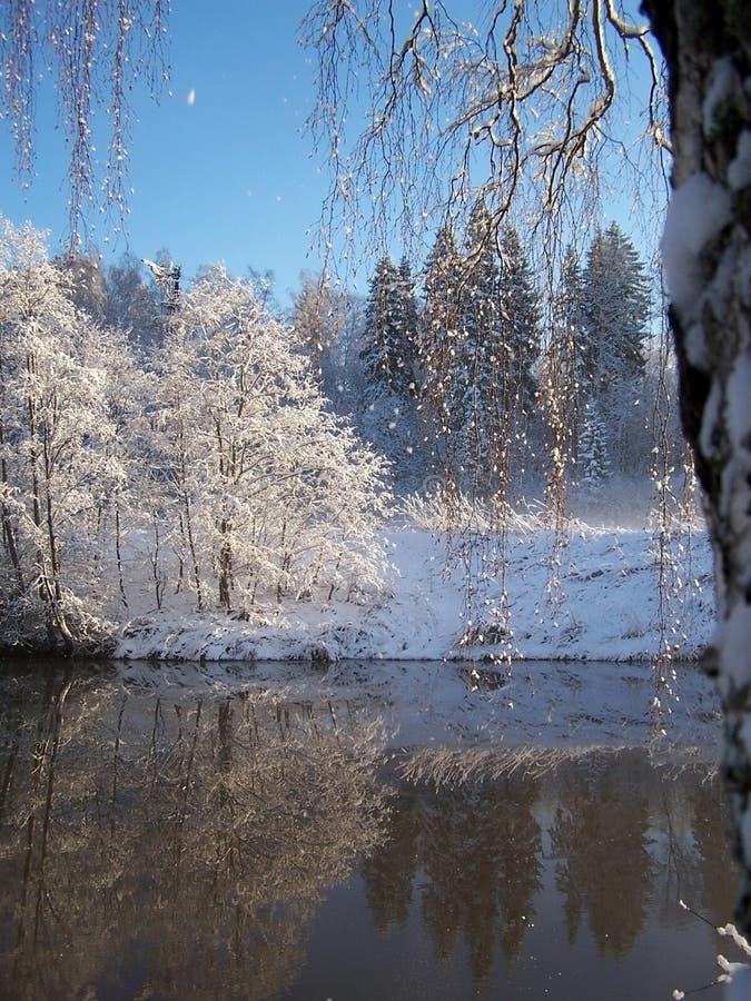 pierwsza zima śniegu obraz stock