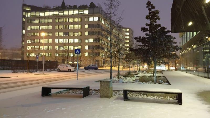 Pierwszy śnieg w Grudniu 2018 zdjęcie royalty free