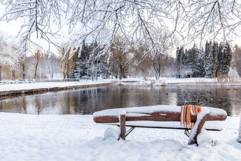 Pierwszy śnieg w miasto parku z kaczkami na lodowatym stawie i benc obrazy stock