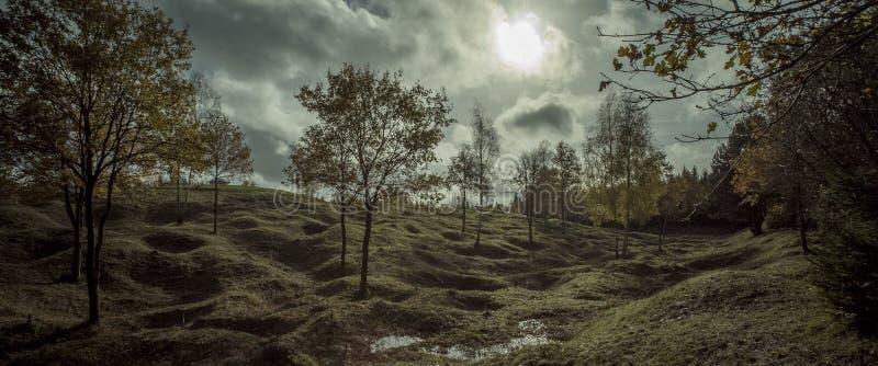 Pierwszy wojny światowa pole bitwy, Froideterre, Verdun, France zdjęcia stock
