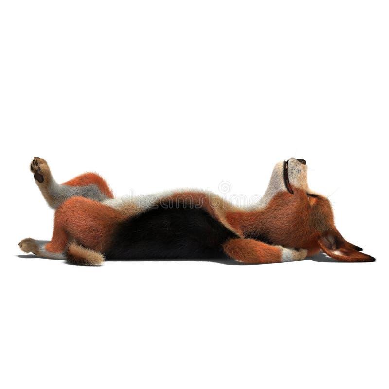 Pies śpi na podłoga ilustracji