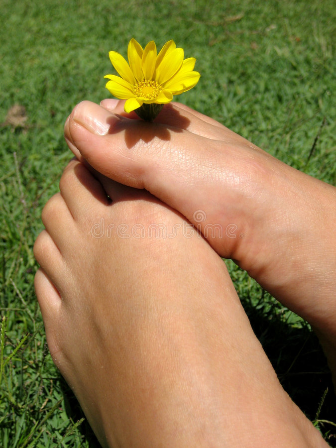 Pies de flor foto de archivo