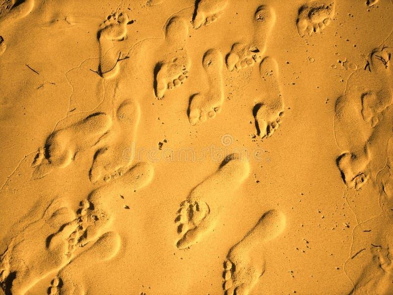 Pies de la arena foto de archivo