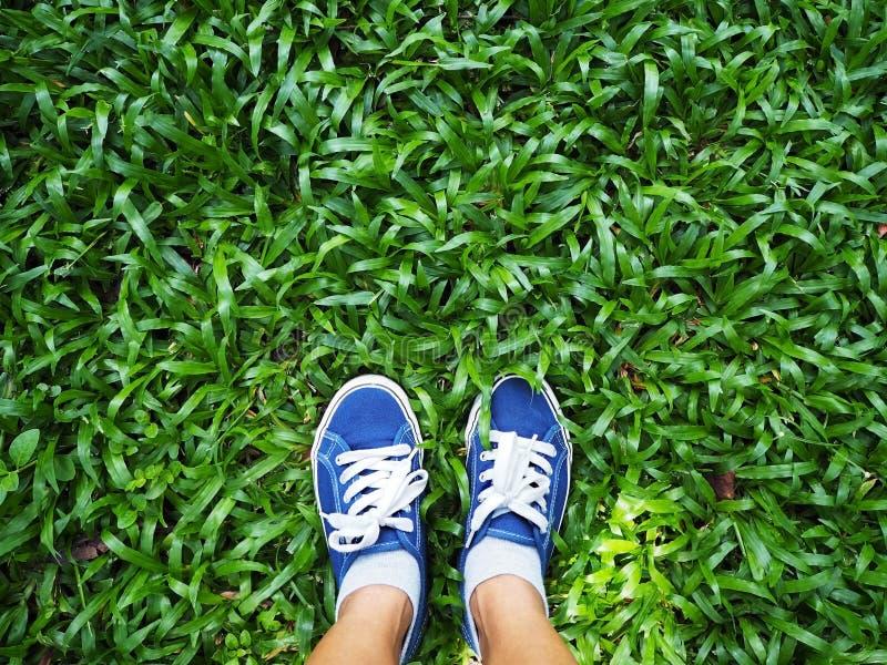 Pies de la mujer de Selfie que llevan la zapatilla de deporte azul en hierba verde imagen de archivo