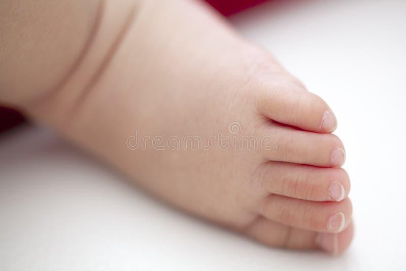 Pies de un beb? fotos de archivo