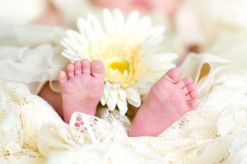 Pies del bebé con la flor fotos de archivo