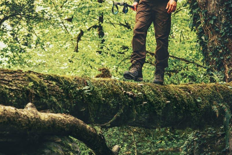 Pies del viajero que caminan el río de la travesía en el bosque imágenes de archivo libres de regalías