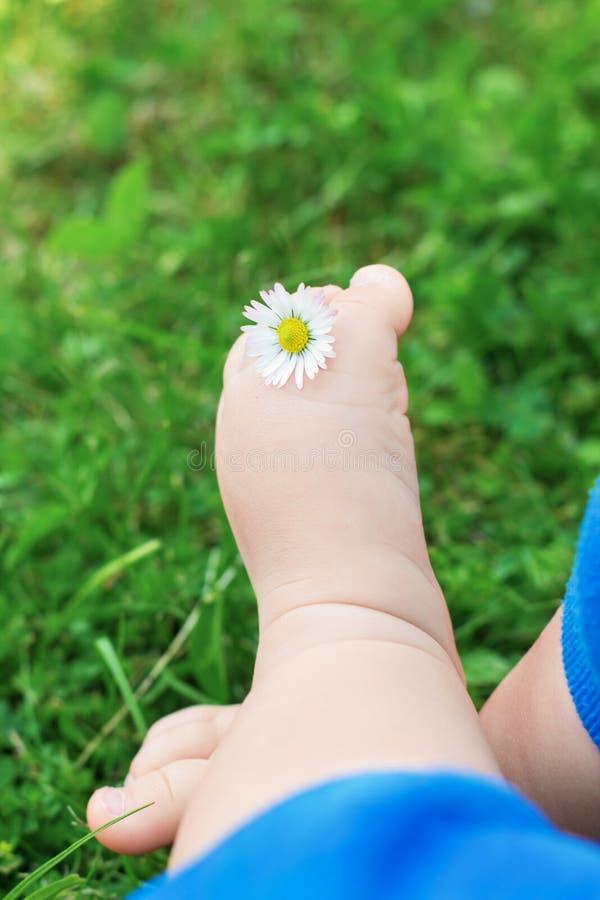 Pies desnudos del pequeño bebé con la flor en hierba verde fresca fotos de archivo