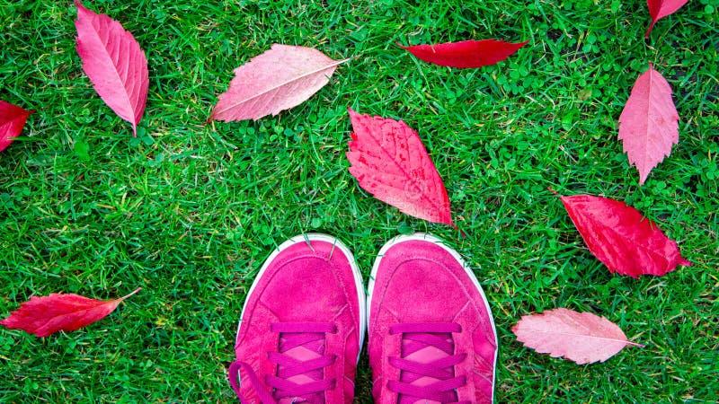 Pies en zapatillas de deporte en hierba en tiempo del otoño imágenes de archivo libres de regalías