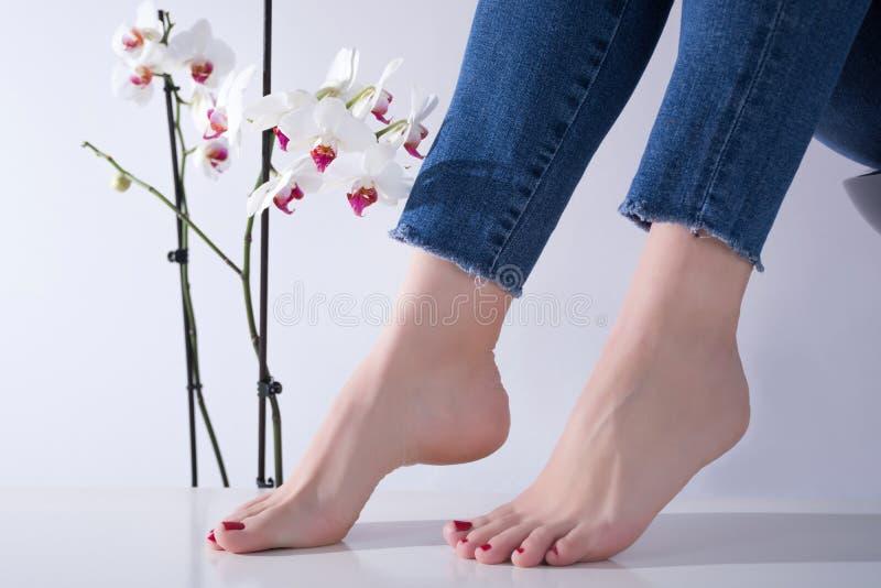 Pies femeninos con pedicura roja y vaqueros en las piernas, flores blancas de la orquídea en fondo imagenes de archivo