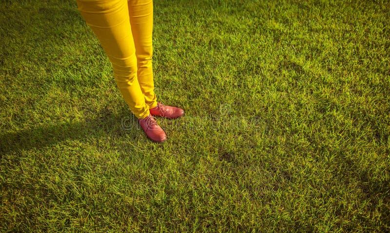 Pies femeninos en zapatos rojos en la hierba verde foto de archivo libre de regalías