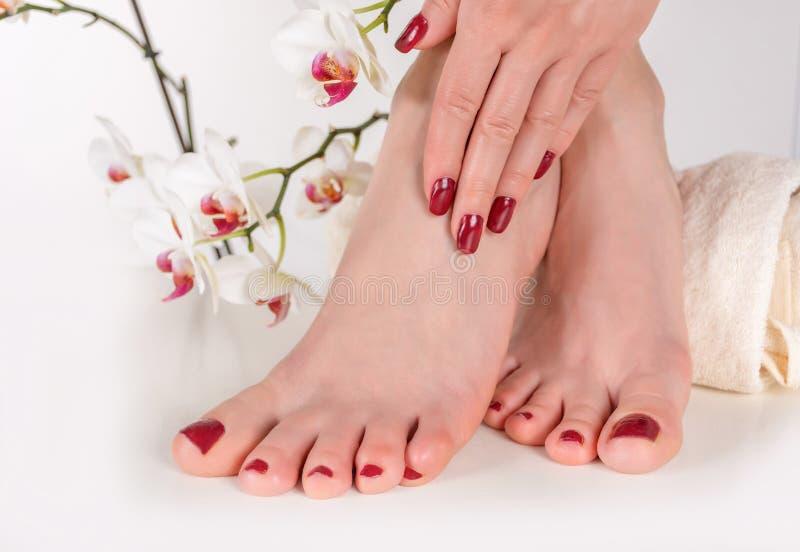 Pies femeninos jovenes con la pedicura y la mano del color de vino en las piernas en la toalla imagenes de archivo