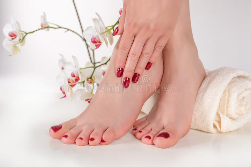 Pies femeninos jovenes con la pedicura y la mano del color de vino en las piernas en la toalla foto de archivo