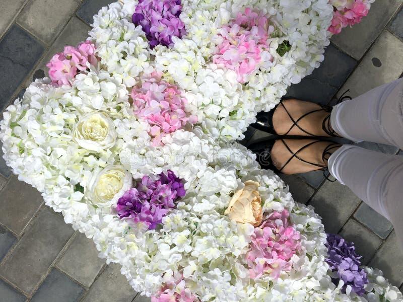Pies, flores y amor de la mujer fotos de archivo libres de regalías