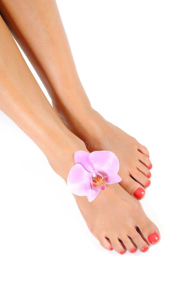 Pies hermosos de pierna con pedicure perfecto del balneario fotografía de archivo libre de regalías