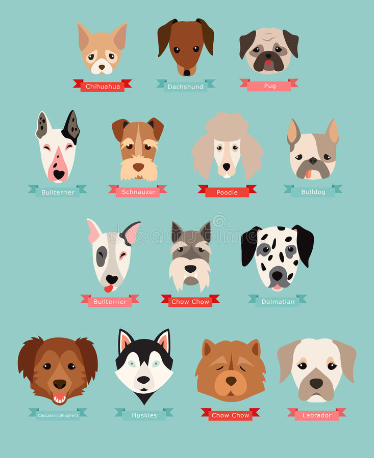 Pies hoduje kolekcję z faborkiem i imieniem royalty ilustracja