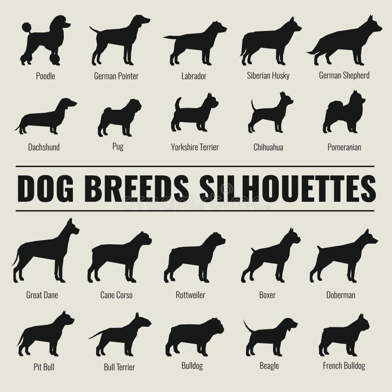 Pies hoduje wektorowe sylwetki ustawiać ilustracja wektor