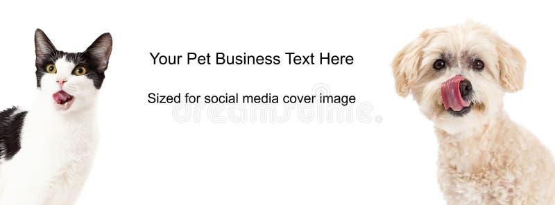 Pies I Kot oblizania warg Okładkowa fotografia zdjęcie royalty free
