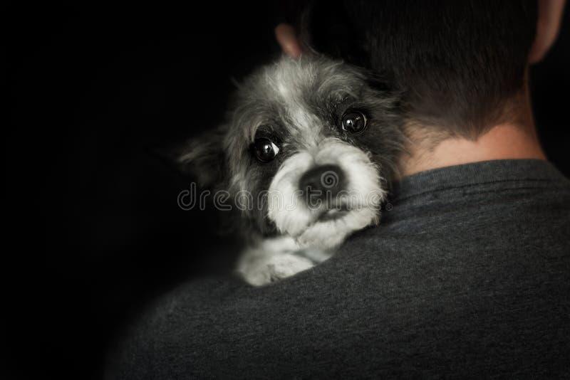 Pies i właściciel zamknięci wpólnie obrazy royalty free
