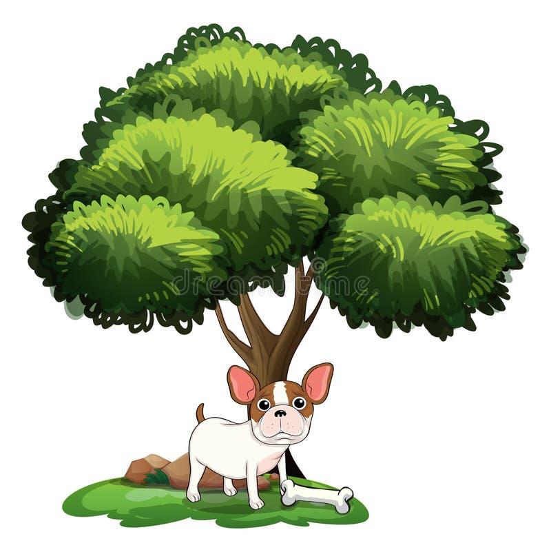 Pies pod drzewem ilustracja wektor