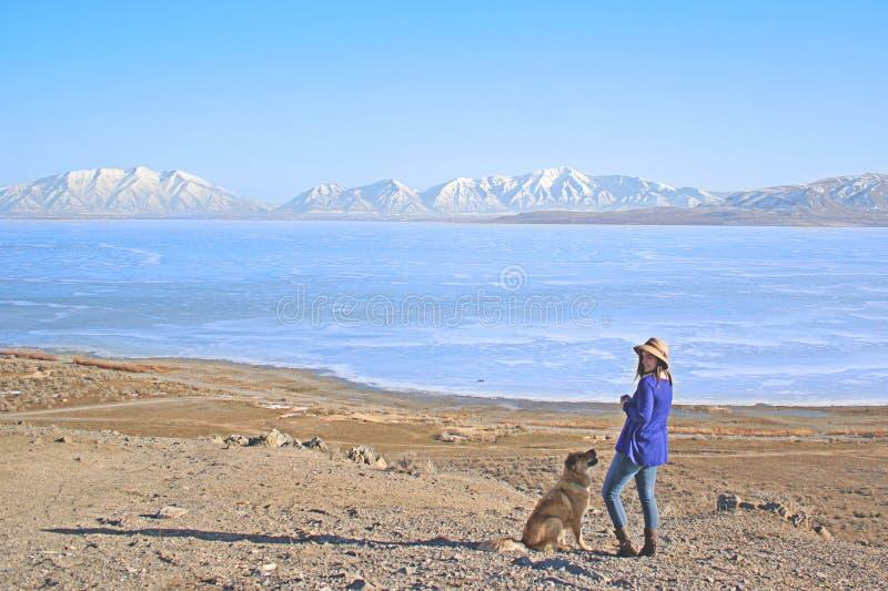 Pies przy jeziorem fotografia royalty free