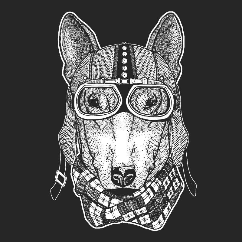 Pies Rocznika motocyklu hemlet Retro stylowa ilustracja z zwierzęcym rowerzystą dla dzieci, dzieciaki odziewa, koszulki ilustracja wektor