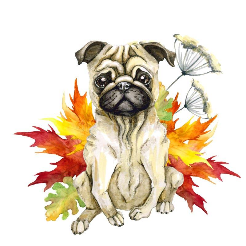 Pies trakenu mops Jesień liście słodki piesek ilustracji