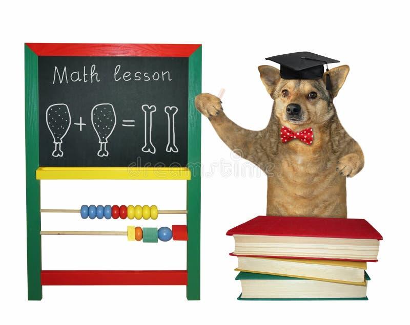Pies uczy blisko blackboard royalty ilustracja