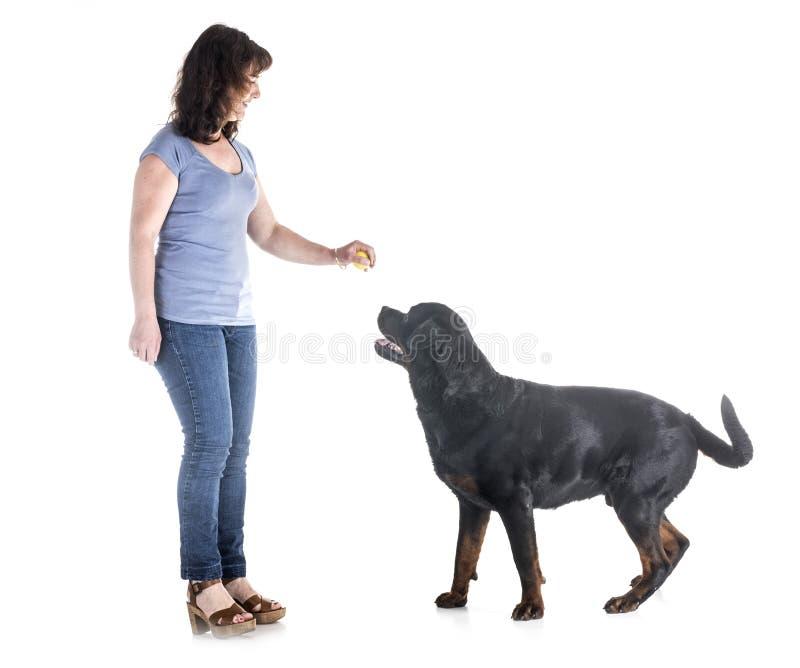 Pies, właściciel i posłuszeństwo, obraz stock