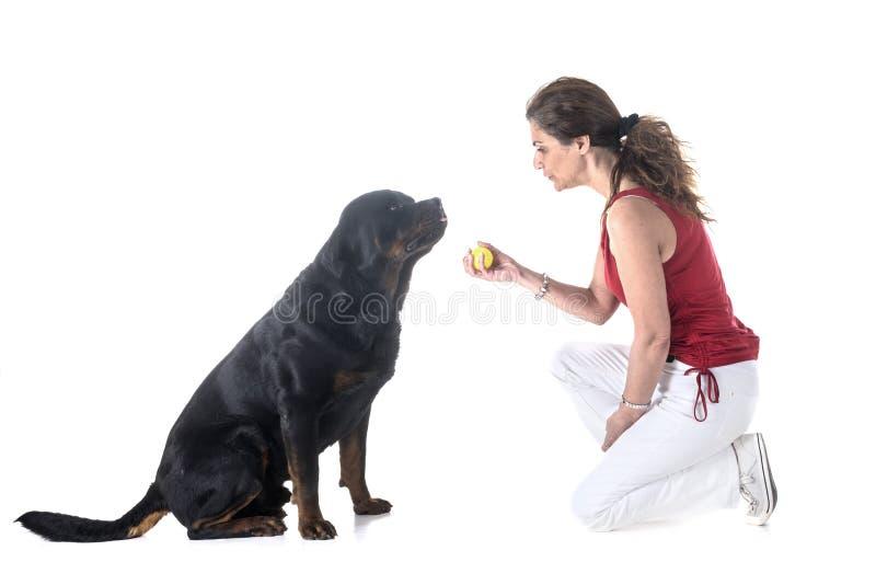 Pies, właściciel i posłuszeństwo, zdjęcia stock