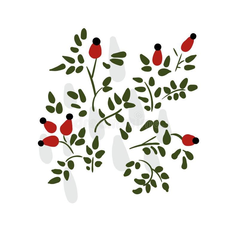 Pies wzrastał kwiatu kwiecistego projekta karcianego wektorowego elementu pierwotnego scandinavian ilustracji