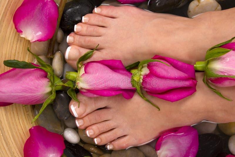 Pies y rosas imágenes de archivo libres de regalías