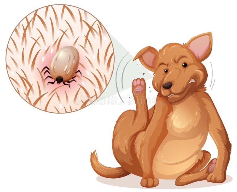 Pies z pchłą royalty ilustracja