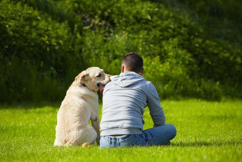 Pies z psem zdjęcia stock