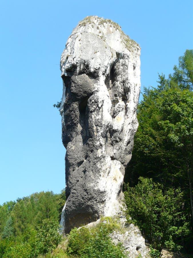 PIESKOWA SKALA, de Foelie van POLEN - Hercules-in Krakau-Czestochowa Upla stock afbeelding