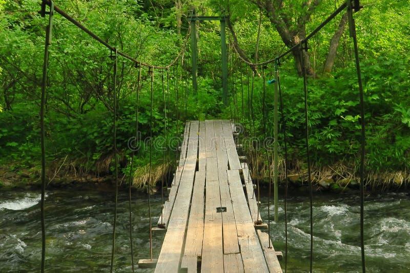 Pieszy zawieszony drewniany most nad halną rzeką obrazy royalty free
