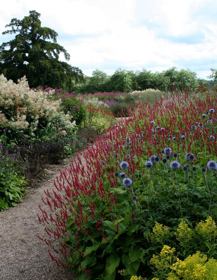 Piet Oudolf's Floral Labyrinth at Trentham Estate. Photographed at the very start of Piet Oudolf's Floral Labyrinth at Trentham Estate, set against stock photo