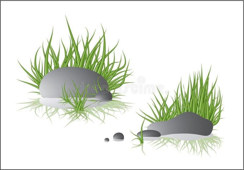 Pietra con erba fotografia stock